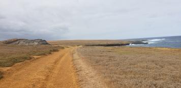 more dirt road